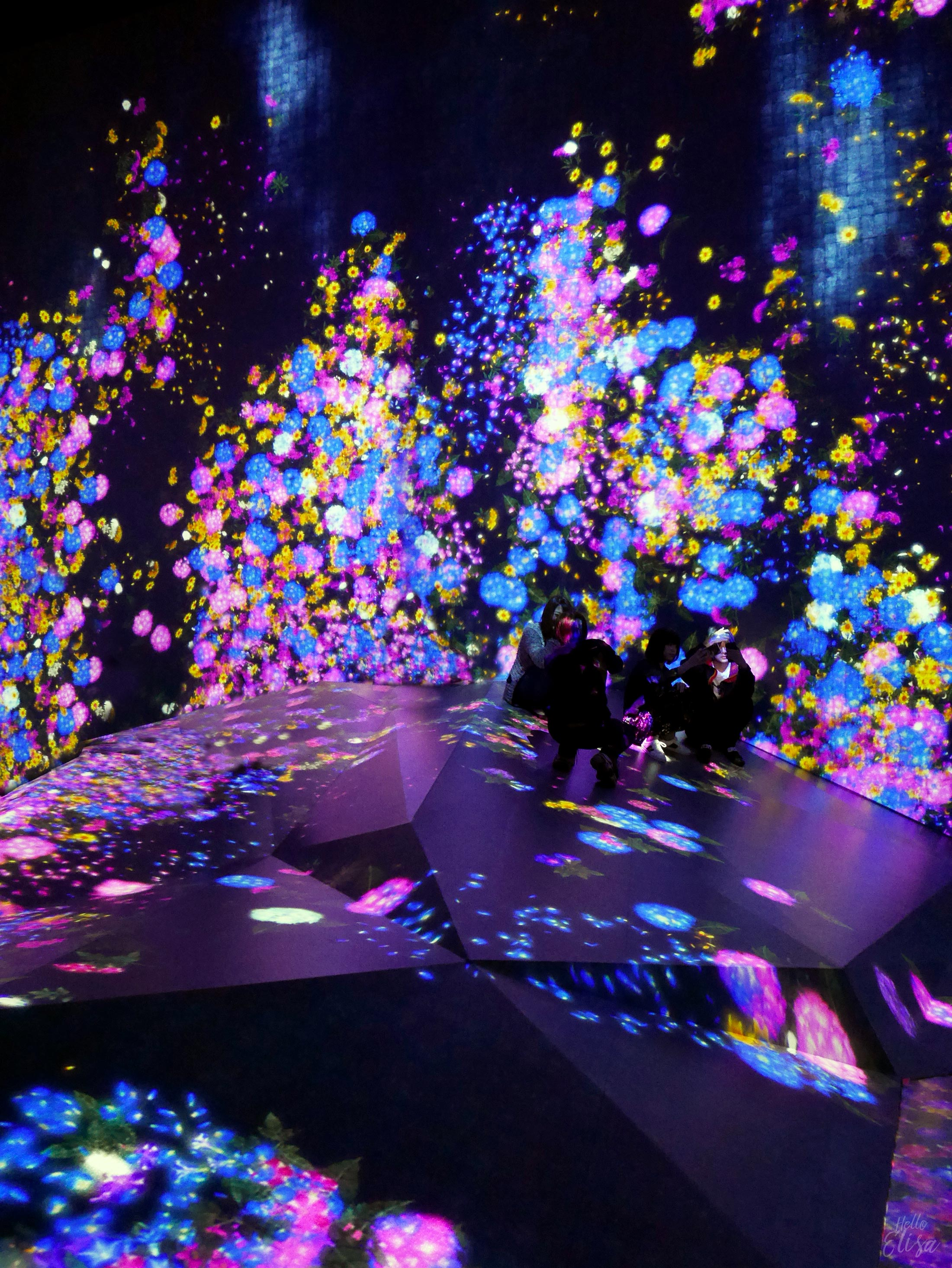 Hello Odaiba - teamLab Borderless